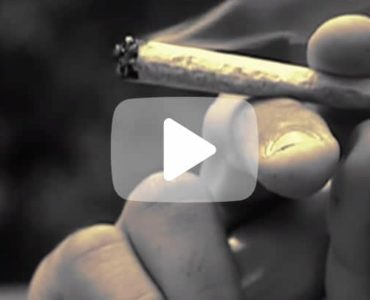 Arrêt du cannabis : la mémoire revient !