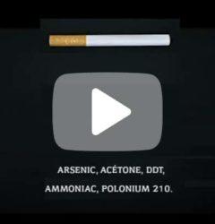 Tabac - Vidéo la plus cynique